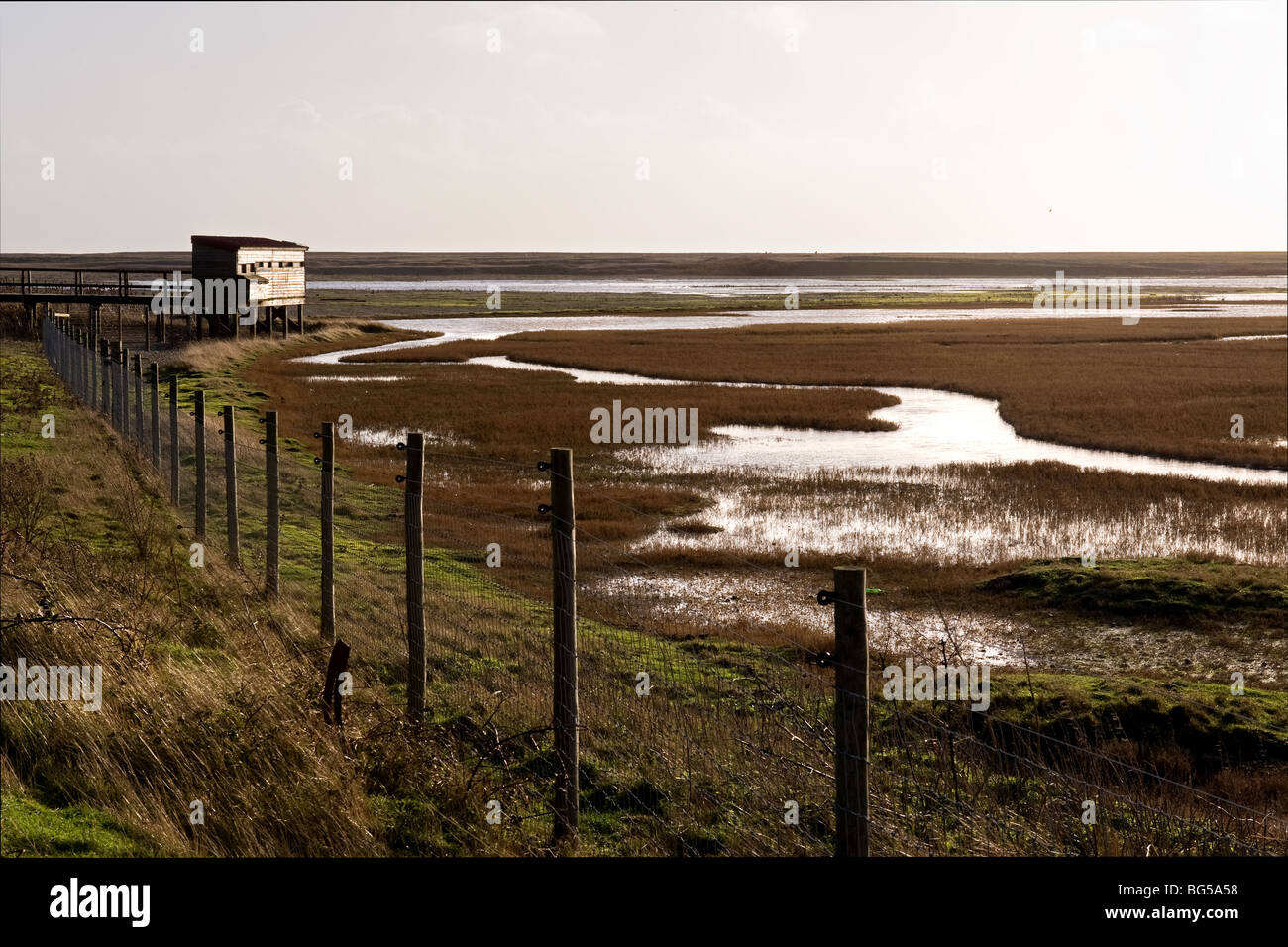 A birdwatching hide at Rye Harbour Nature Reserve in East Sussex.  Photo by Gordon Scammell - Stock Image