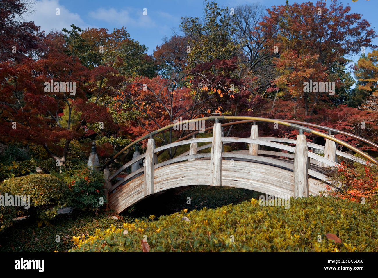 Footbridge in a Japanese garden, Fort Worth Texas, USA Stock Photo ...