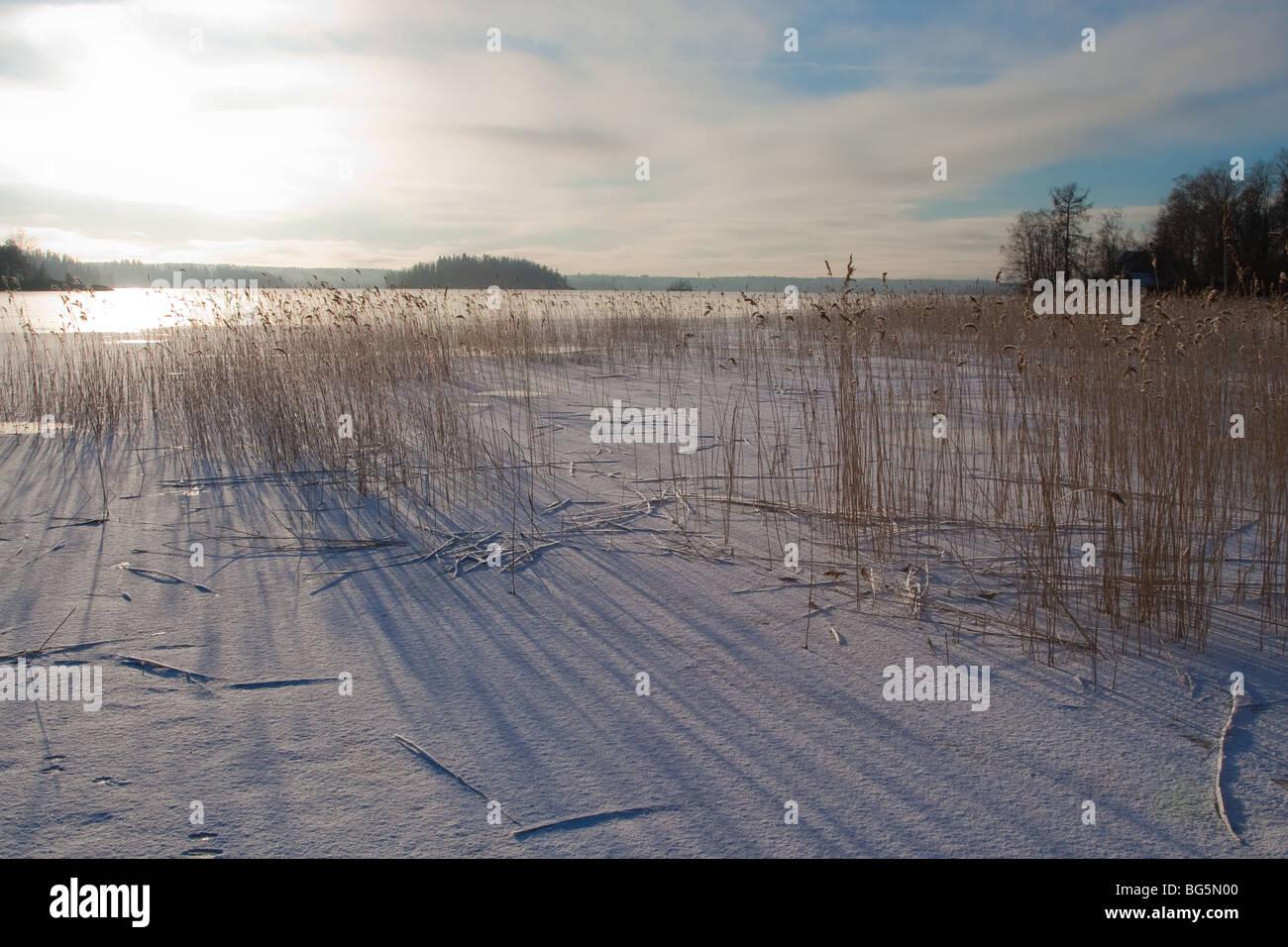 Lake is frozen - Stock Image