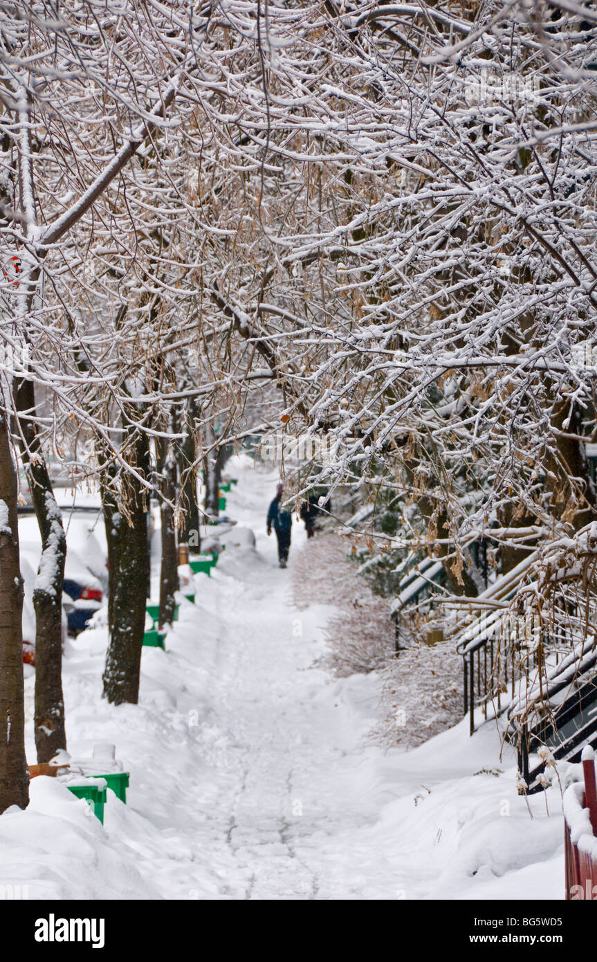 Saint Famille street in the winter Montreal canada - Stock Image