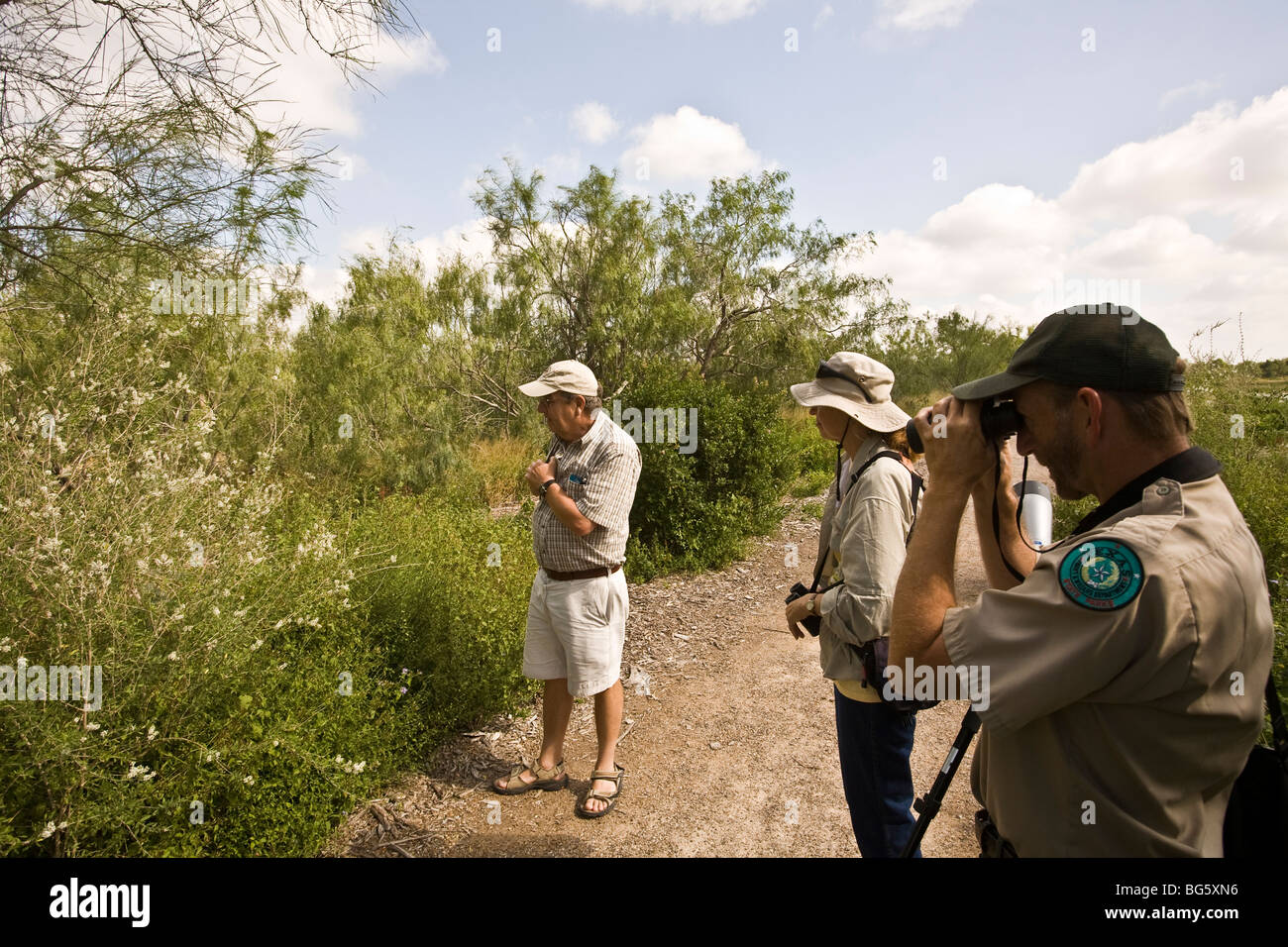 Visitors entering Estero Llano Grande State Park greeted by a literal swarm of butterflies and dragonflies near - Stock Image