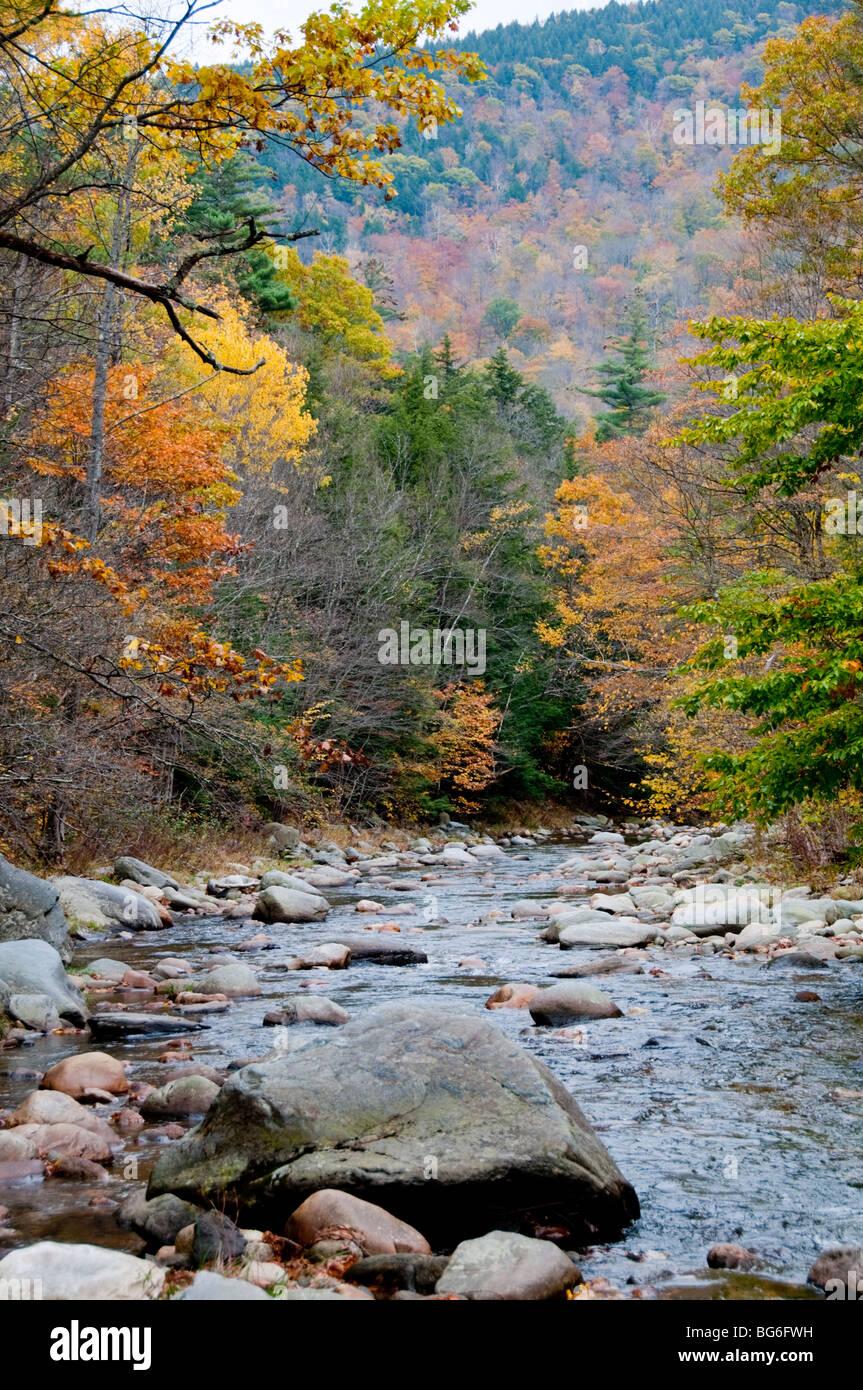 River Deerfield, Mohawk, Trail, Autumn Colours, Colors, Ash, Beach,Full Autumn Foliage. Massachusetts,USA Stock Photo