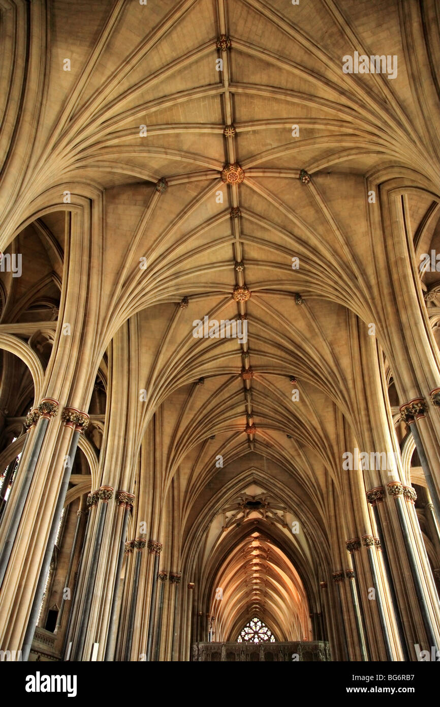 Bristol Cathedral Vaulting, England - Stock Image