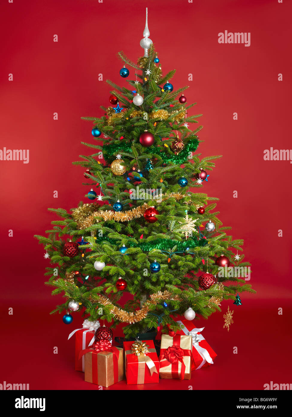 Decorated real Christmas tree isolated on red background - Stock Image