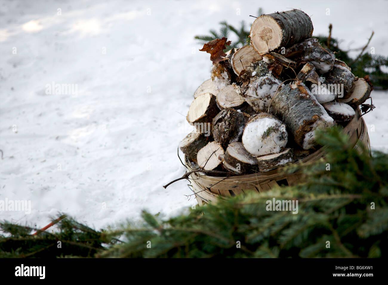a basket full of cut tree stumps - Stock Image