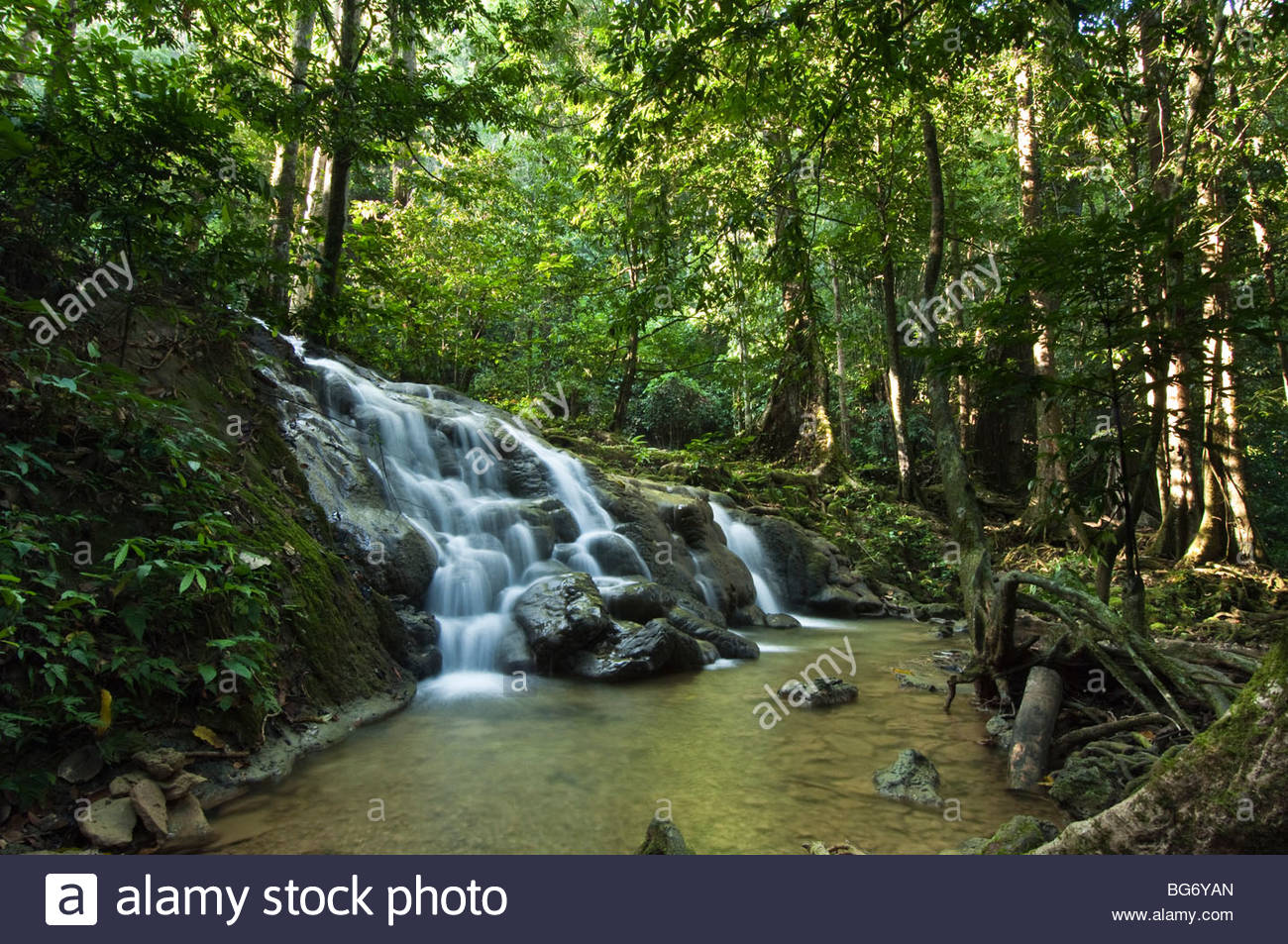 Waterfall in the tropical rainforest. - Stock Image