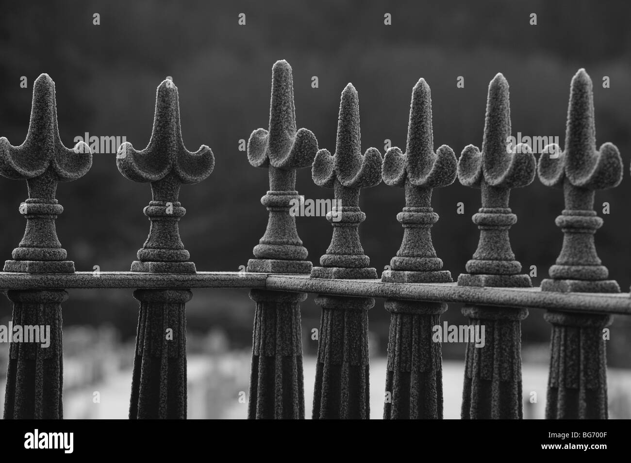 Frosty black iron railings in the depth of winter - Stock Image