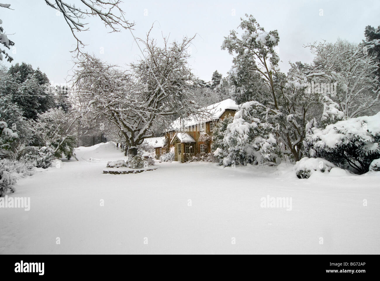Picturesque Christmas Card Image Of A Snowy Landscape Scene With Cosy Country Cottage Surrounded By Trees And The Virgin Snow