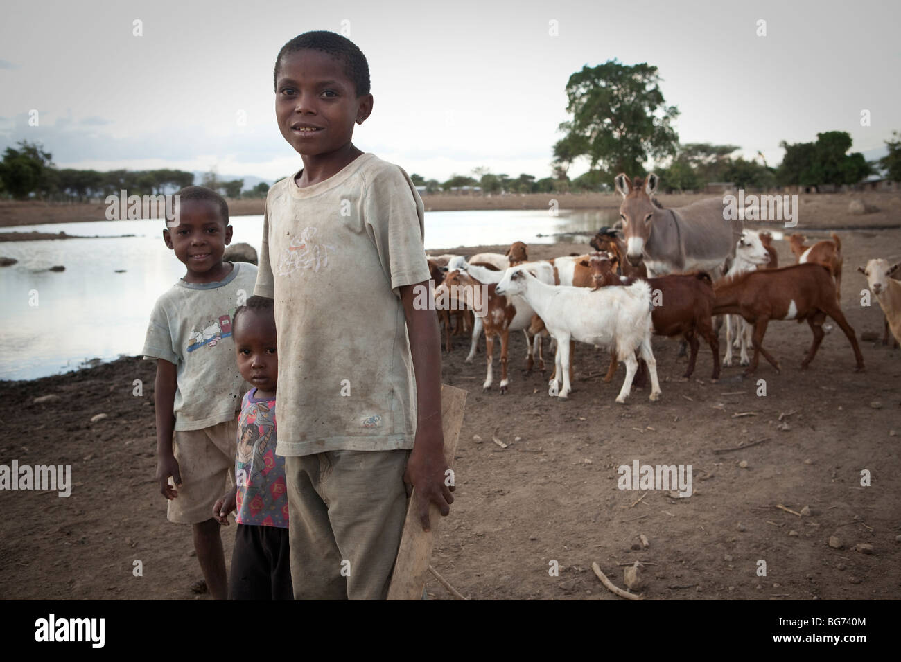 Children stand along a watering hole with their herd of goats in Manyara Region, Tanzania. - Stock Image