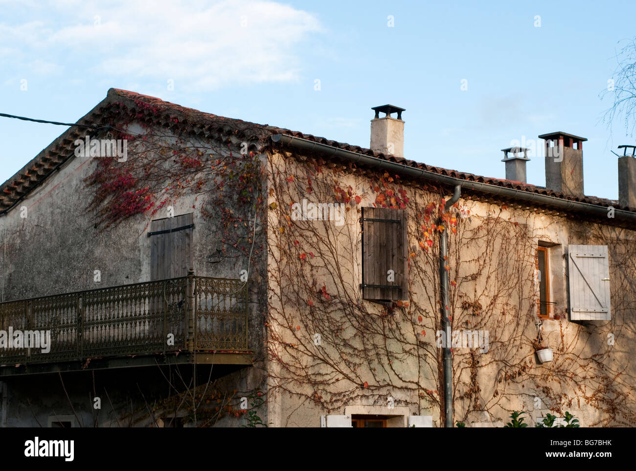 Virginia creeper on an old house the village of Brissac, Herault, South of France - Stock Image