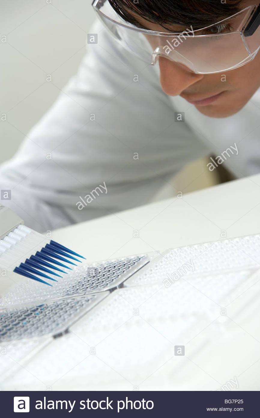 Scientist filling specimen holders - Stock Image