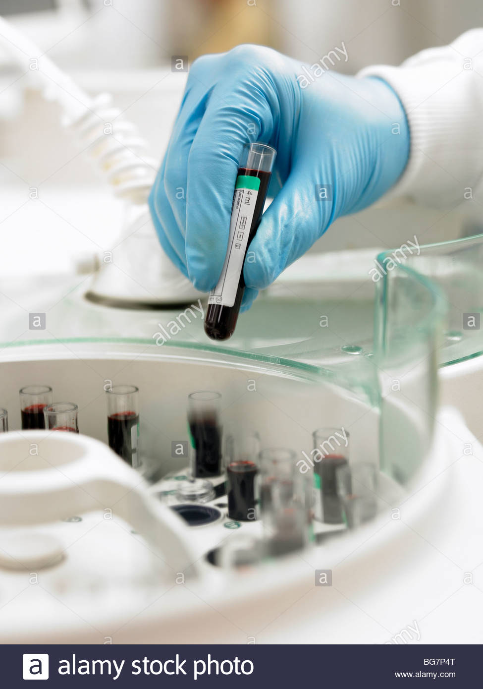 Scientist inserting test tube into centrifuge - Stock Image