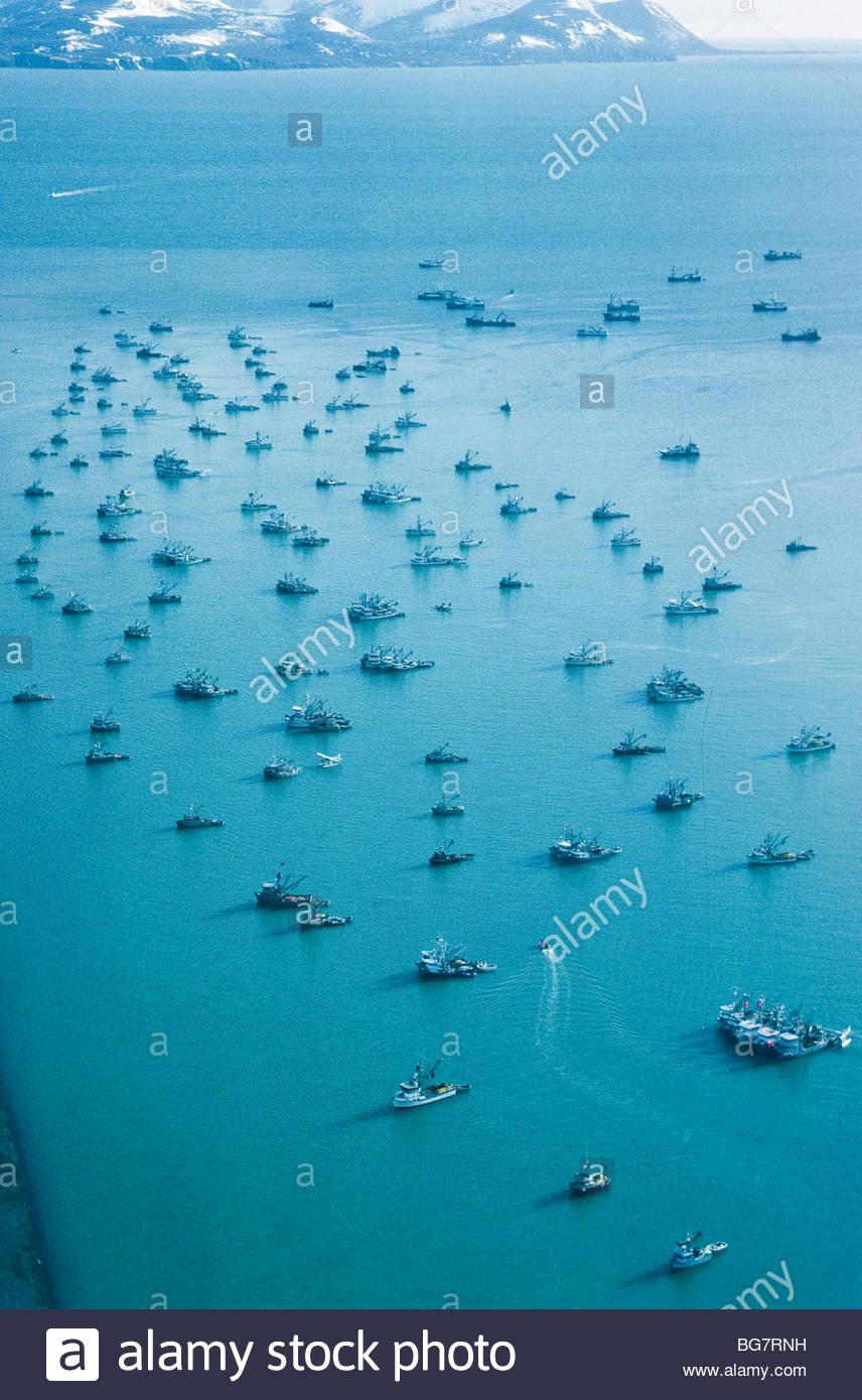 Alaska. Fleet of Hering fishing boats at Togiak in Bristol Bay. - Stock Image