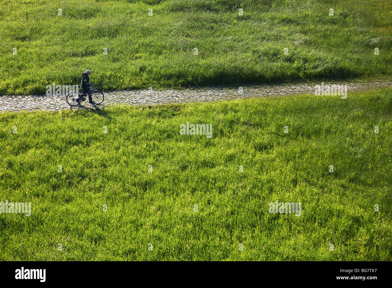 Germany, Saxony, Dresden, Elbe Riverbank, Cyclist - Stock Image