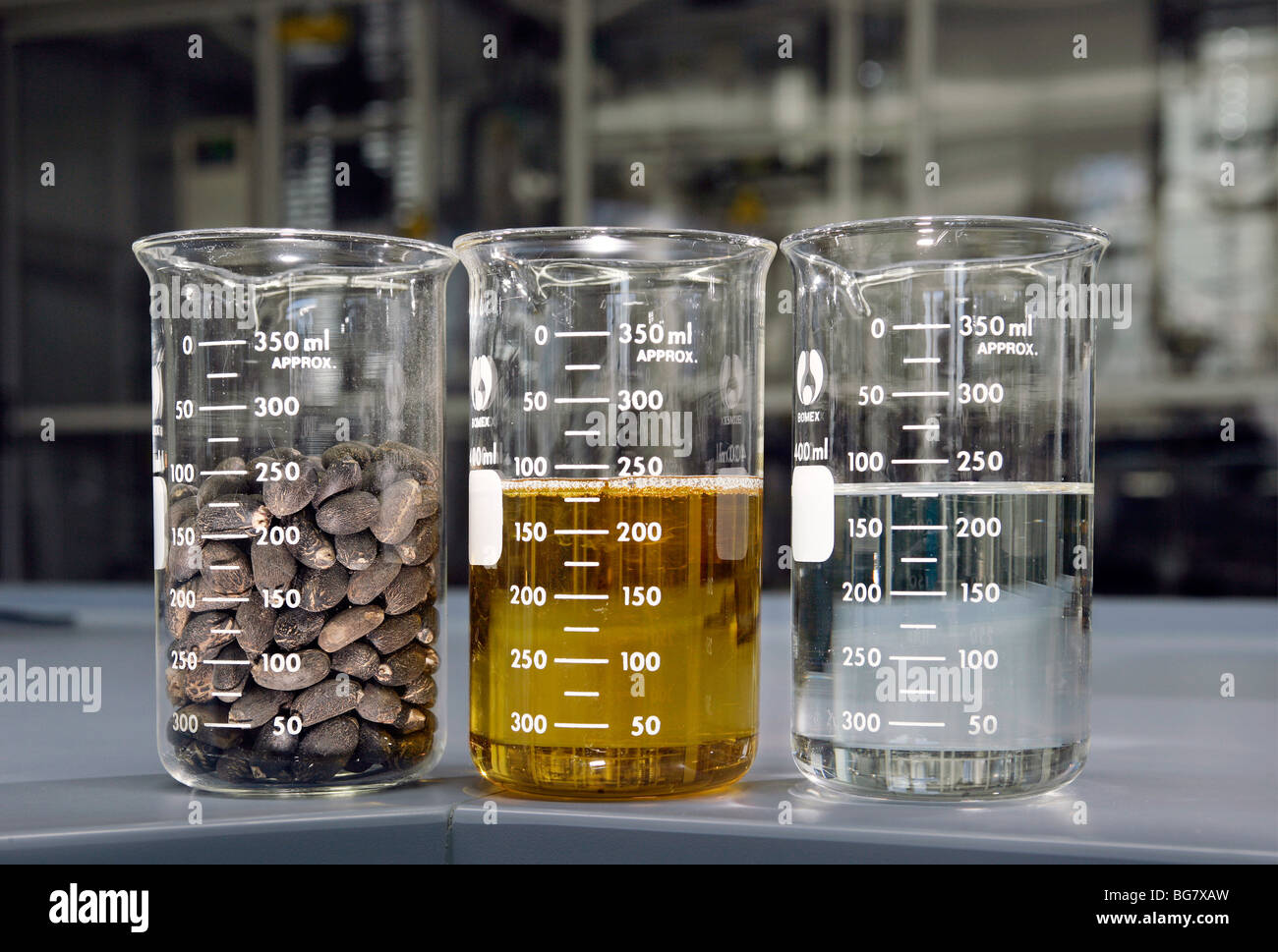 Production of bio-diesel in the BP research center in Bochum, Germany Stock Photo
