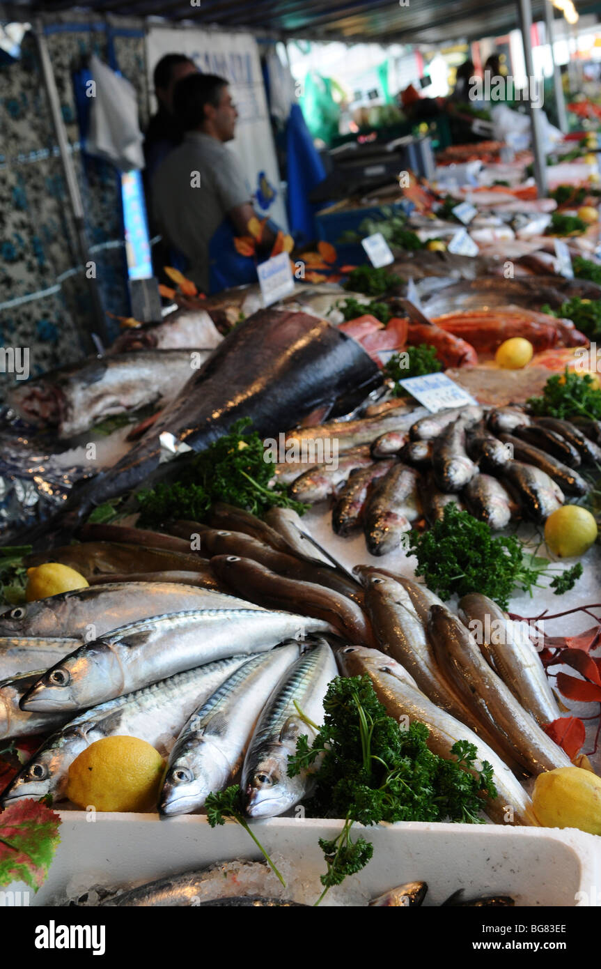 France, Paris, an outdoor, street food market a variety of fresh fish on display - Stock Image