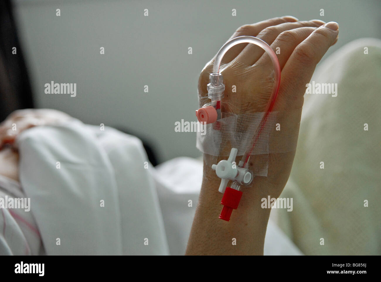 FEMALE PATIENT HAND PREAPERED FOR  BLOOD TEST - Stock Image