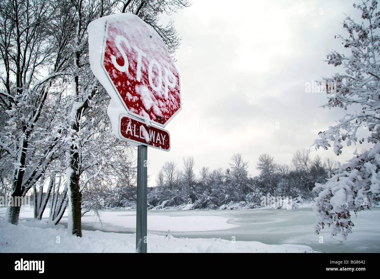 Heavy snow hangs on trees and bushes, and a stop sign near Wingra Creek after 14-inches of snow blanked the Madison, Stock Photo