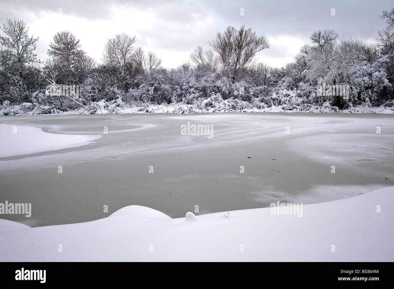 Walking By Wingra Creek In Snow >> Heavy Snow On Trees Stock Photos Heavy Snow On Trees Stock Images
