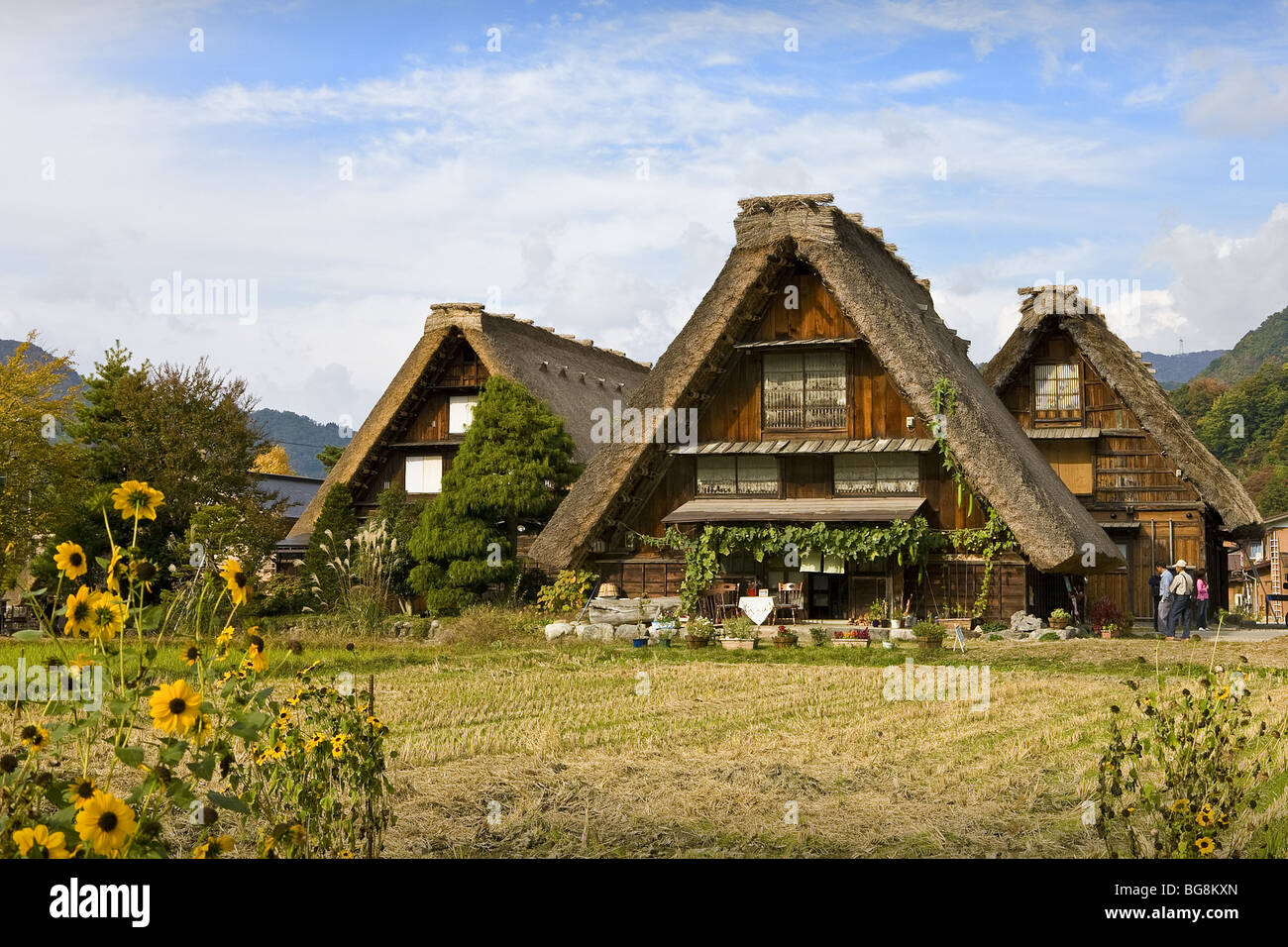 Traditional Japanese houses built in the style called 'Gassho-zukuri' in the village of Shirakawa-go. Japan. - Stock Image