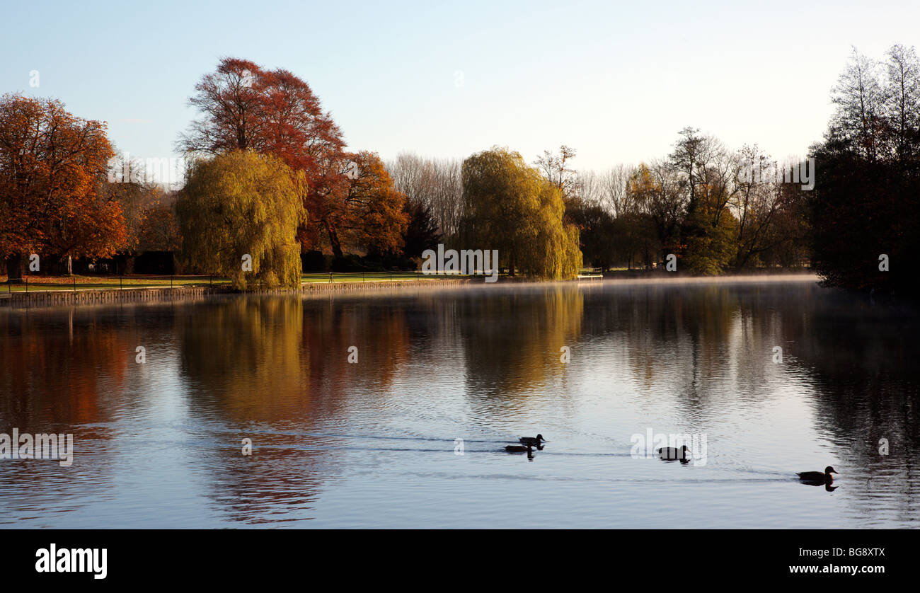 River Thames at Medmenham Abbey Oxfordshire England UK Stock Photo