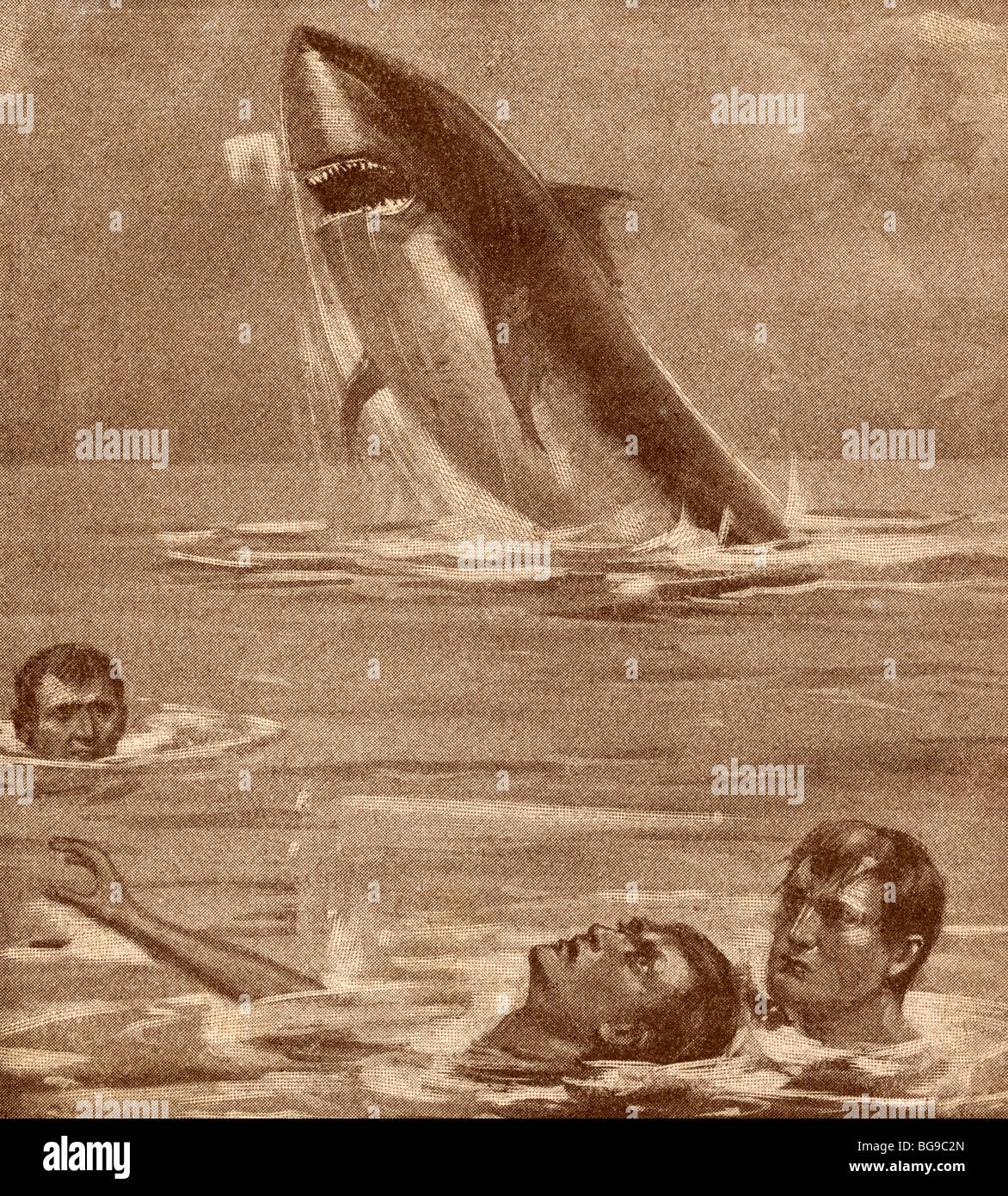 19th century illustration of man rescuing swimmer with shark in background. - Stock Image