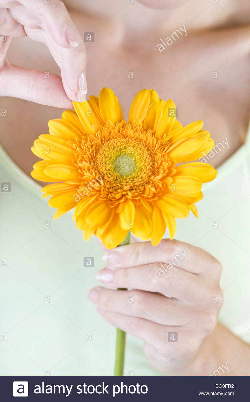 A Young Woman Plucking The Petals From An Orange Flower Stock Photo