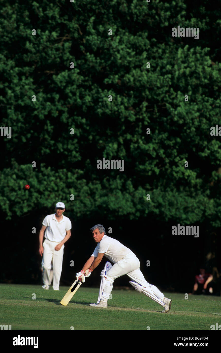 Cricket batsman about to strike the ball - Stock Image