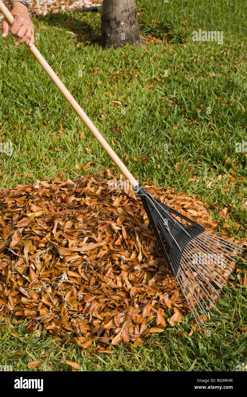 Dry Front Yard Stock Photos & Dry Front Yard Stock Images - Alamy