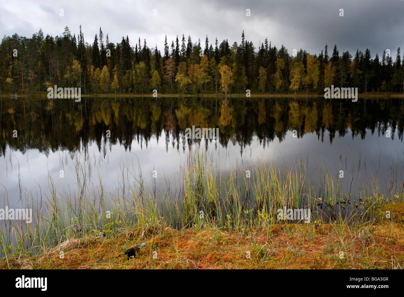 Oulanka National Park: Hiidenlampi - Stock Image