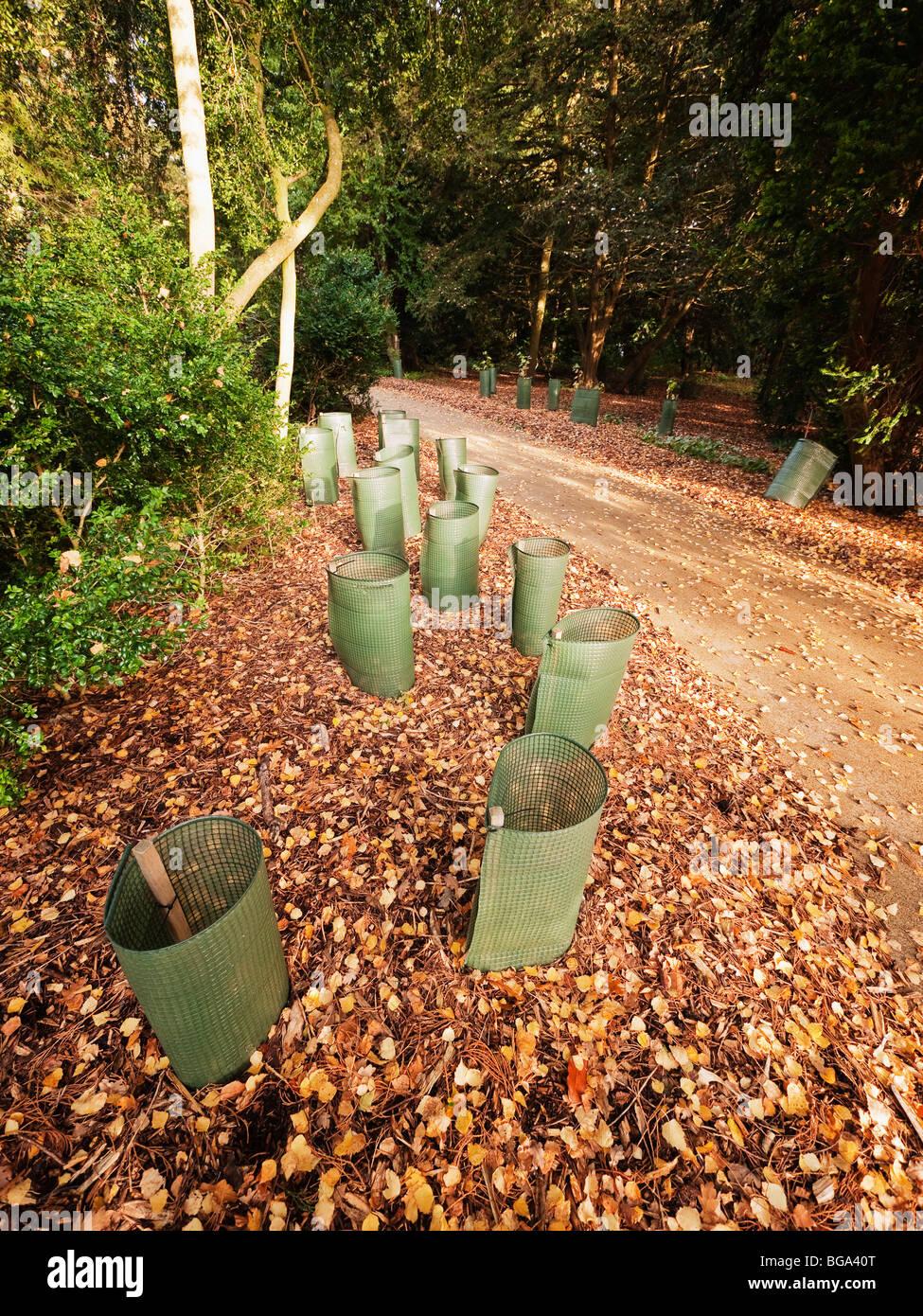 Nursery Garden Way Stock Photos & Nursery Garden Way Stock Images ...