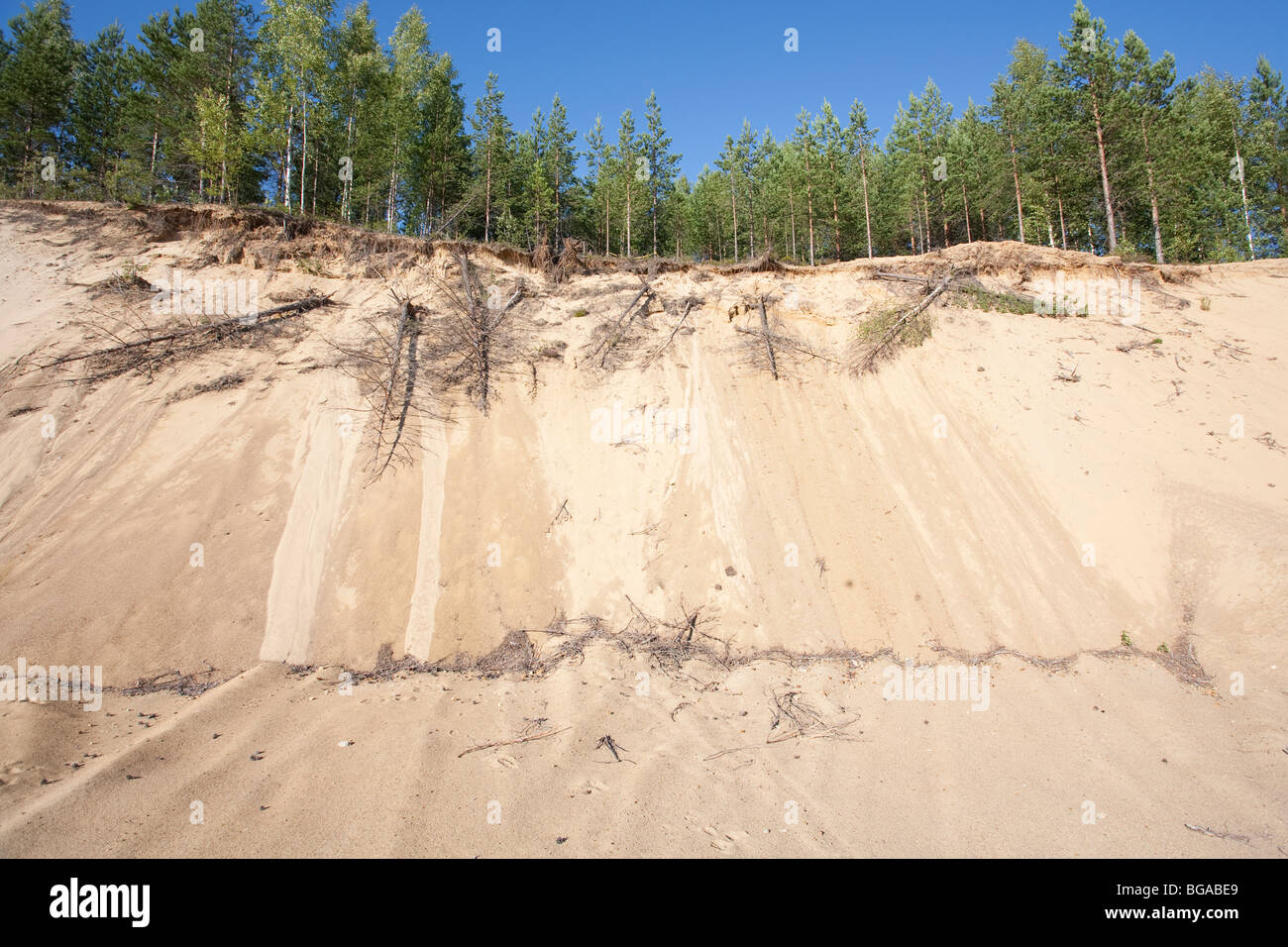 Fine sand wall at glacial esker , Finland - Stock Image