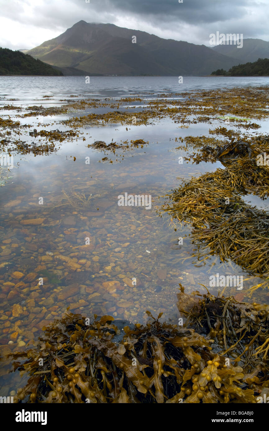 Loch Leven from North Ballachulish - Stock Image