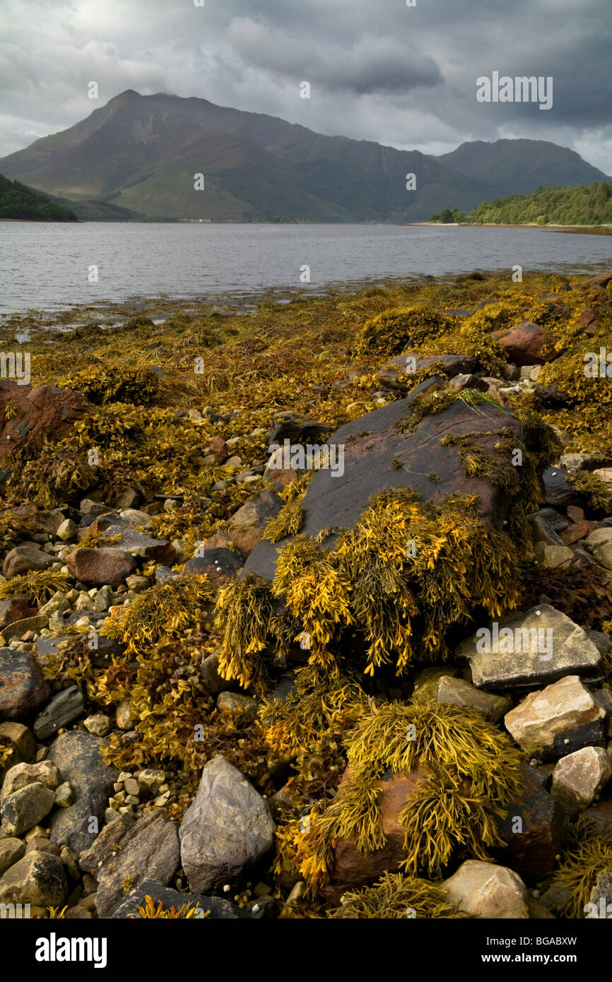 Loch Leven from North Ballachulish Stock Photo