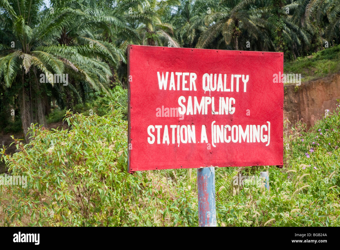A water quality sampling station sign in a riparian section on a palm oil plantation. The Sindora Palm Oil Plantation. - Stock Image