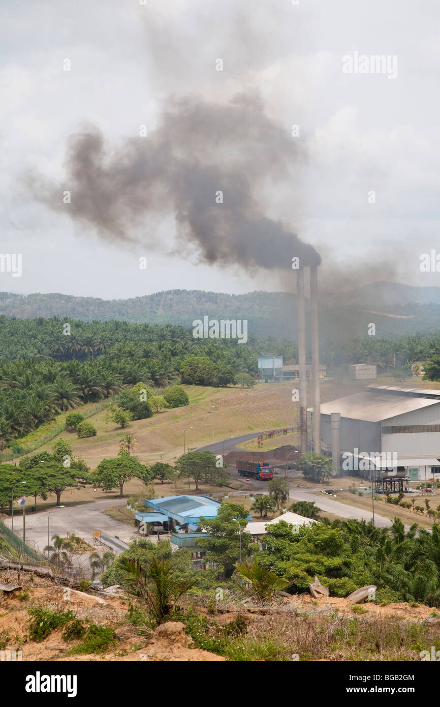 The Sindora Palm Oil Mill surrounded by the Sindora Palm Oil Plantation. Tthe mill and plantation are green certified. Stock Photo