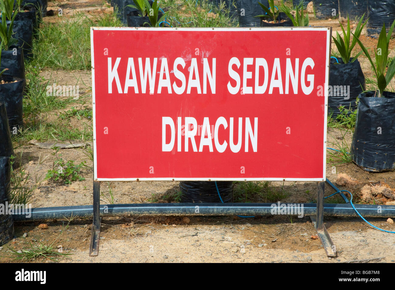 A Malay sign is warning that chemicals are in use in the area. The Sindora Palm Oil Plantation is green certified Stock Photo