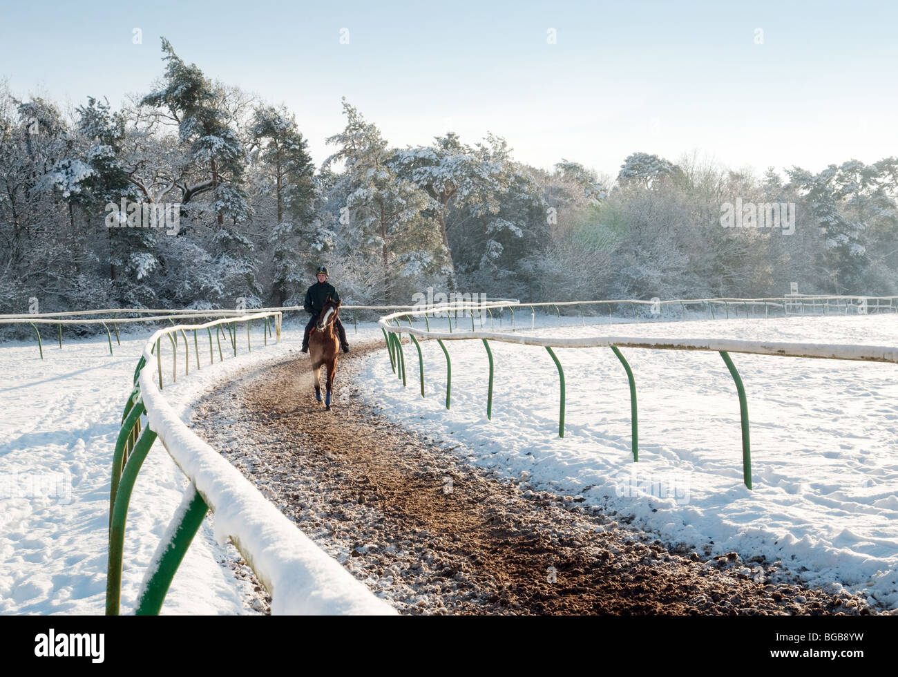 A Racehorse and rider in winter snow, Newmarket, Suffolk, UK - Stock Image