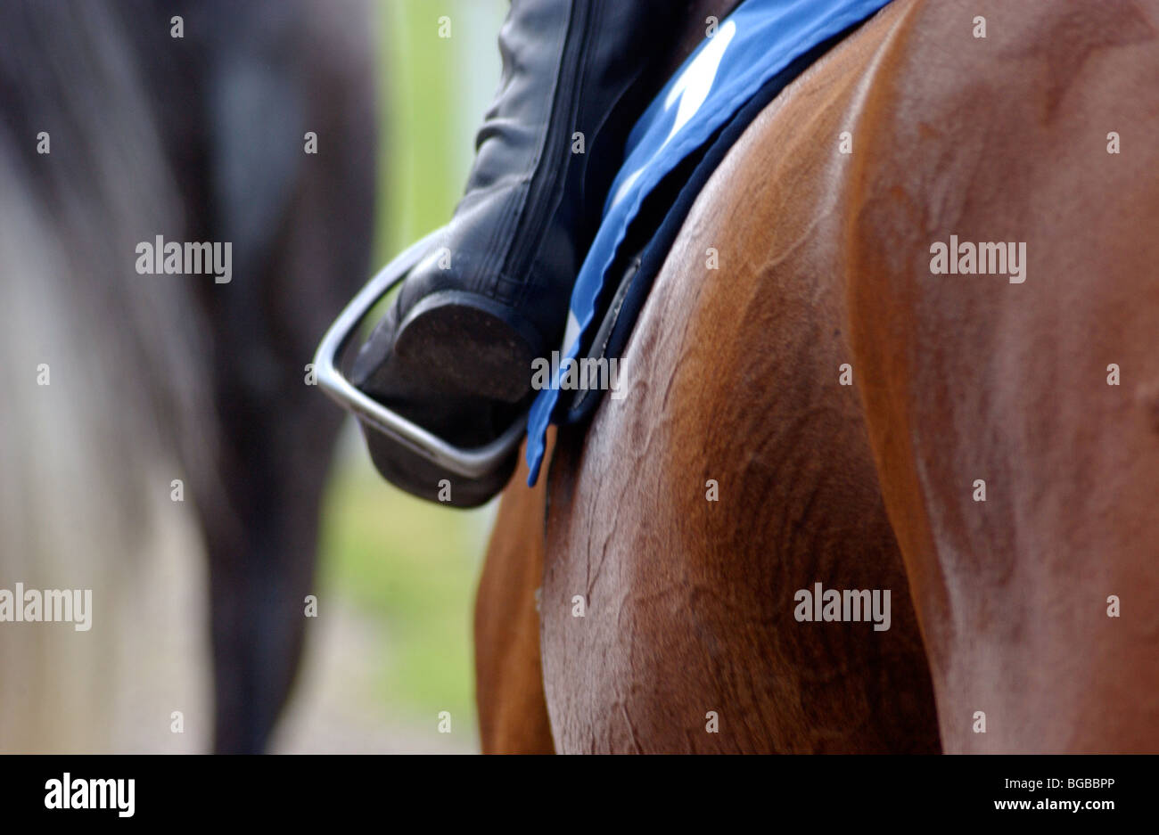 Royalty free photograph of boots saddle stirrup jockey foot on race day UK - Stock Image