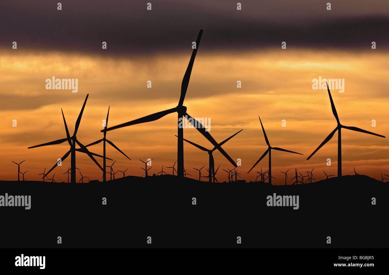 Wind turbines against sunset - Stock Image