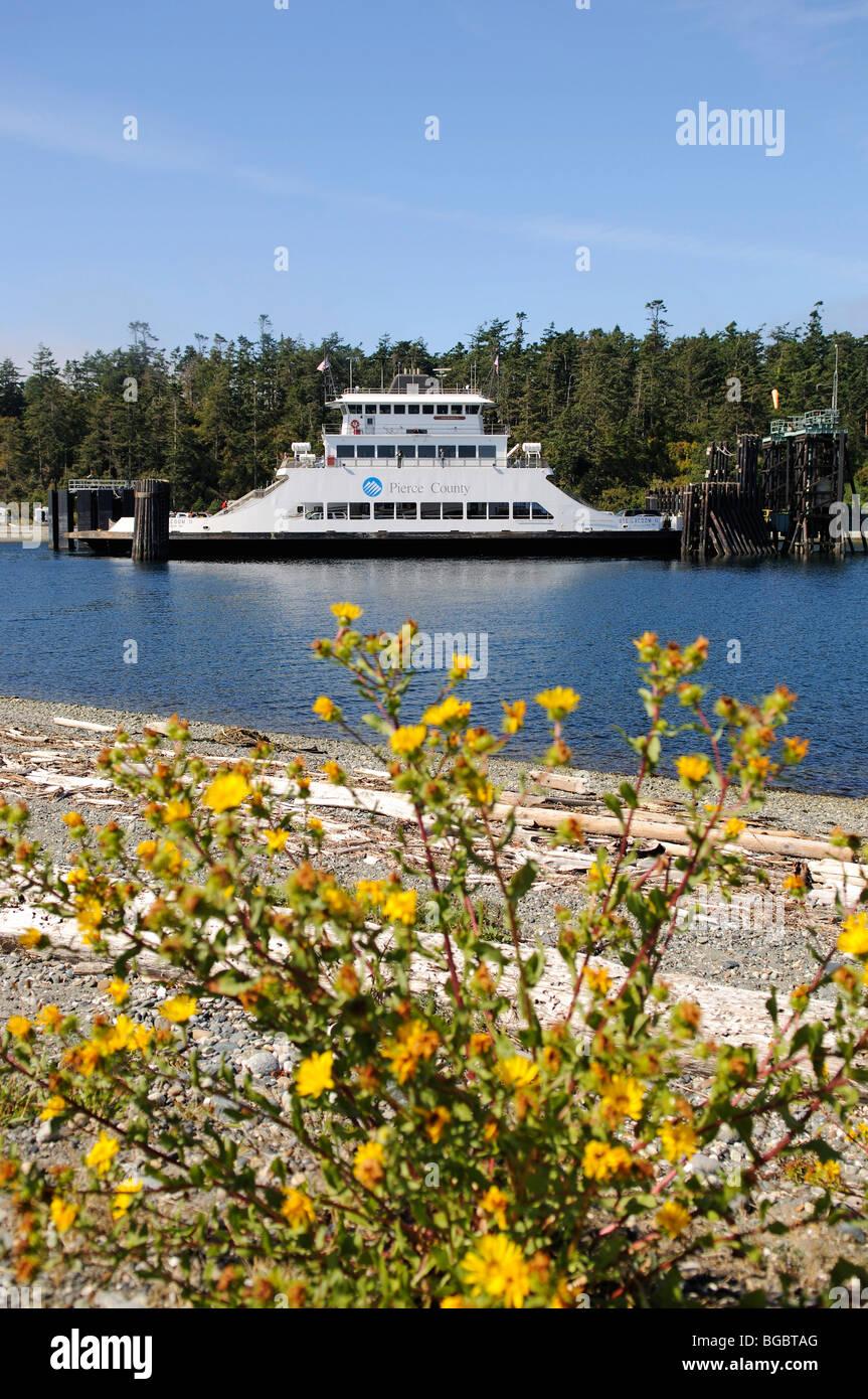Ferry in Edmonds, Puget Sound, Washington State, USA Stock Photo
