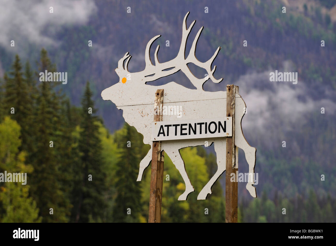 Warning sign, deer, Trans Canada Highway, Revelstoke, British Columbia, Canada Stock Photo