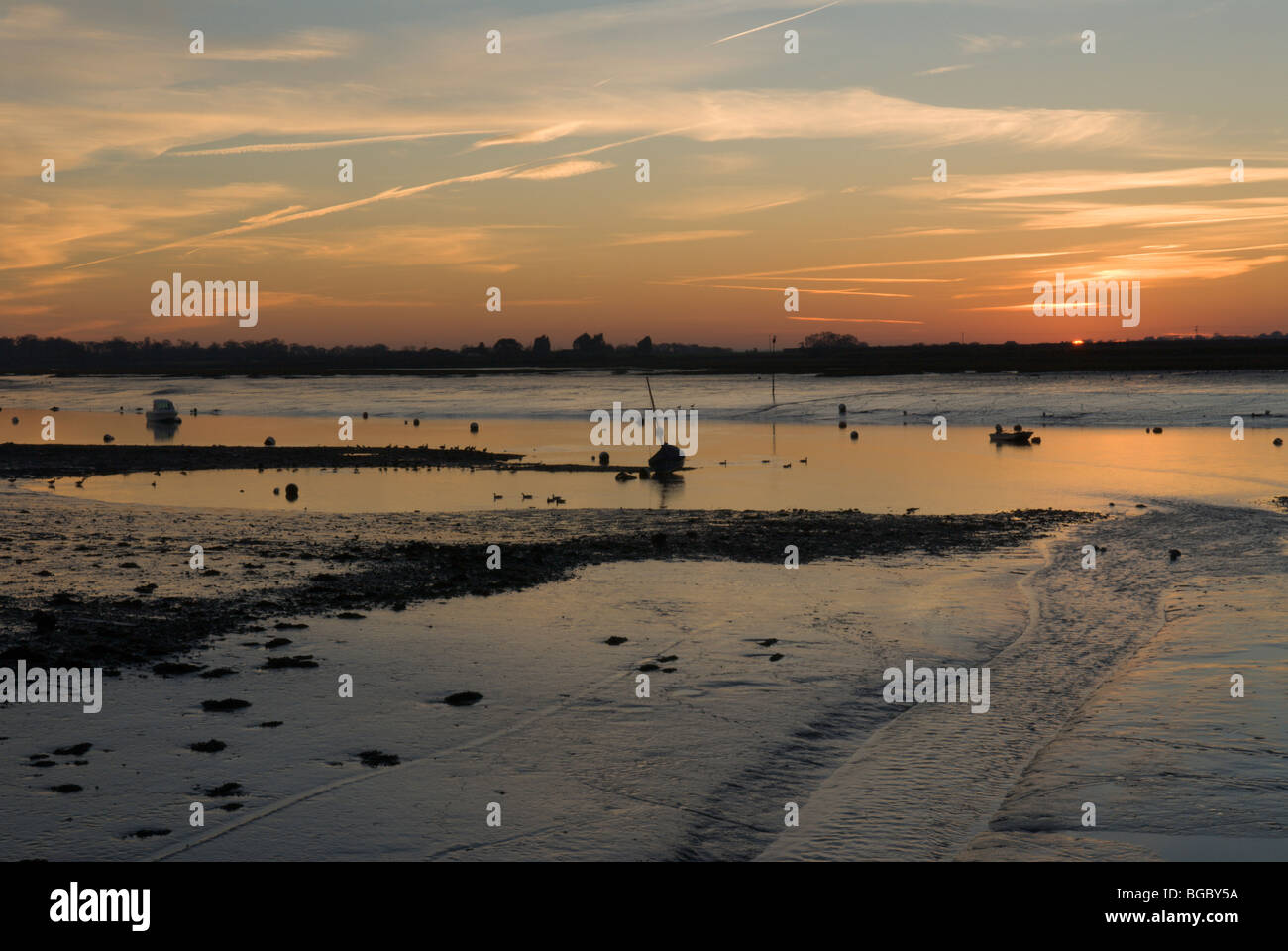Bosham, Chichester Harbour, West Sussex, UK. February. Sunset. Tide out. Exposed mudflats. Various waders feeding. - Stock Image