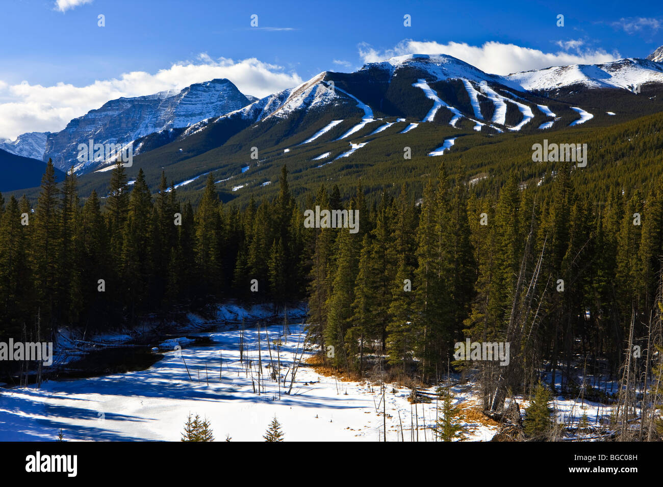 Nakiska Ski Resort on the slopes of Mount Allan (2789 metres/9150 feet) site of the Alpine Events of the 1988 Olympic - Stock Image