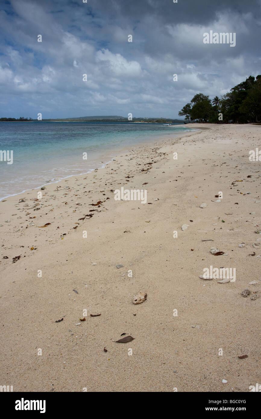 tropical beach vanuatu - Stock Image