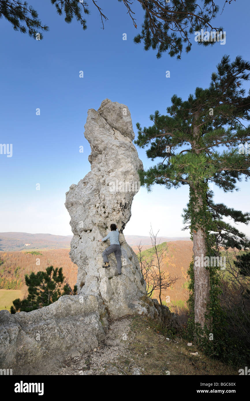 Arnstein rock spire, climber, Triestingtal valley, Lower Austria, Austria, Europe - Stock Image
