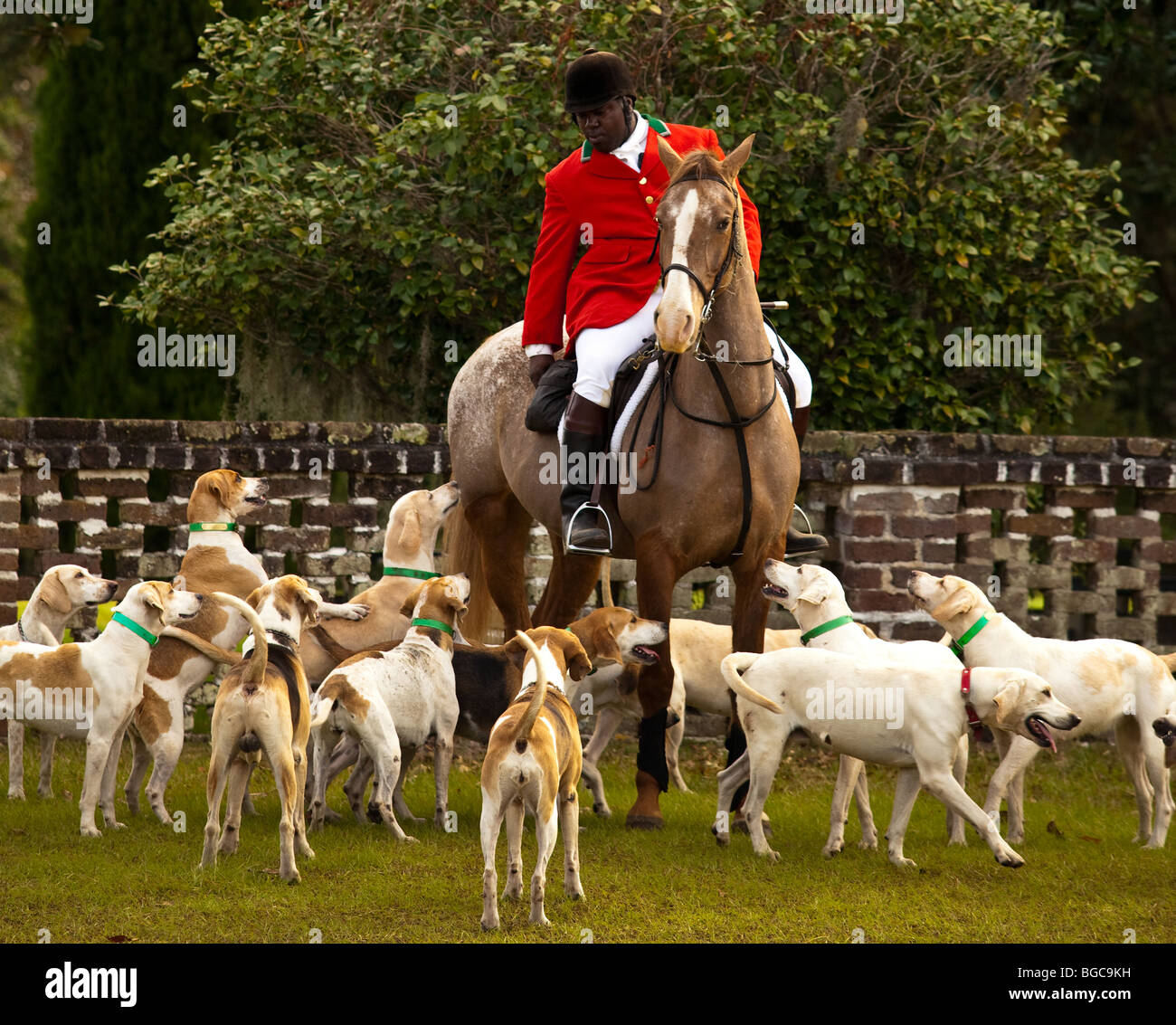 Master of the hounds at the Middleton Place Fox Hunt on the greensward of the plantation house Charleston, SC - Stock Image