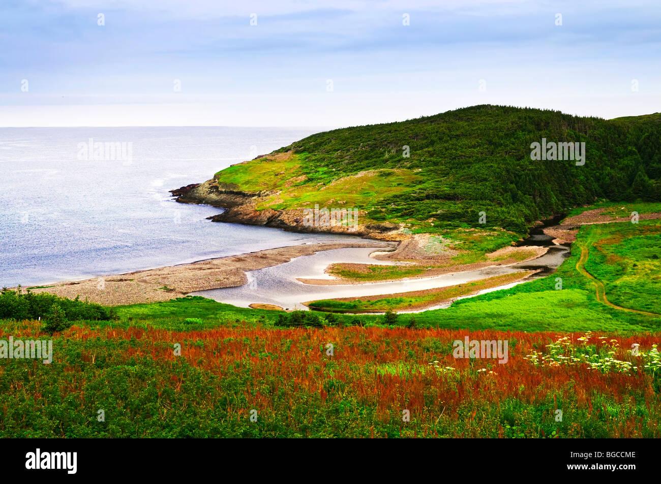 Scenic coastal view of rocky Atlantic shore in Newfoundland, Canada - Stock Image