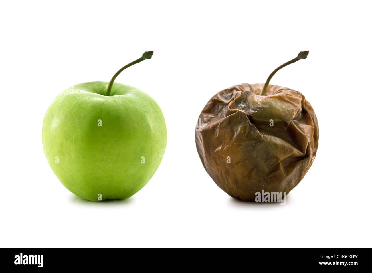 metamorphose of two apple - Stock Image