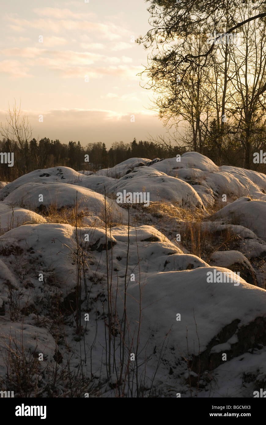 Low sun above the winter Finnish landscape - Stock Image